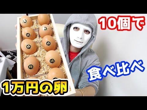 【食べ比べ】世界一高い1万円の卵VS1個20円の卵が同じ味!?【Raphael】