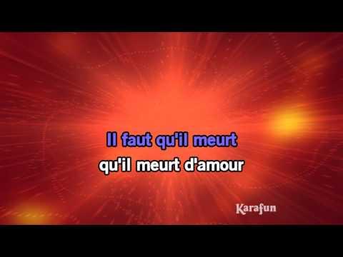 Karaoké Requiem pour un fou (Live) - Johnny Hallyday *