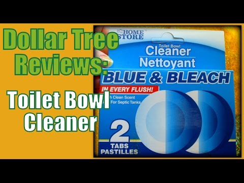 Dollar Tree Reviews: Toilet Bowl Cleaner