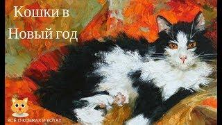Кошки в Новый год