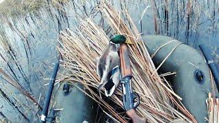 Осенняя охота на утку,на перелетах.Hunting for a duck