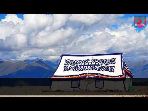 在西藏看到「白帳篷」不要進去!15歲妹子在內等待沒有「懷上決心」就要倒大楣