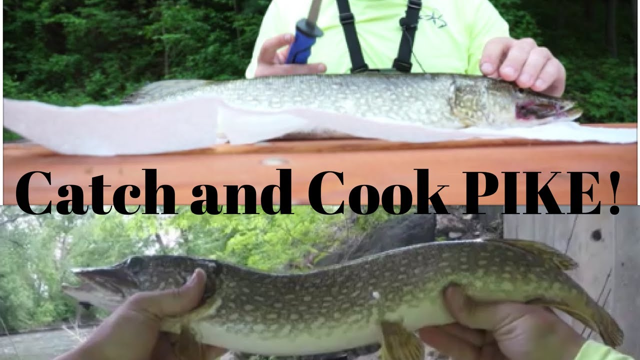 How to clean pike before cooking 77
