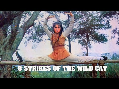 Wu Tang Collection - Eight Strikes Of The Wild Cat