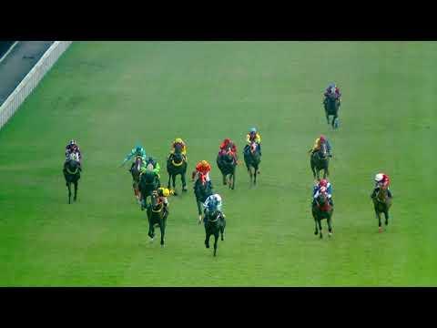 Thailand horse racing 2017 Dec,2   ม้าแข่งเที่ยว 10 ชั้น 7