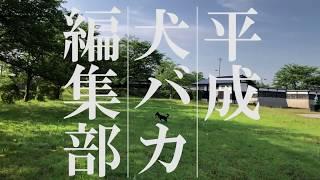 片野ゆか『平成犬バカ編集部』|集英社|ブックティザー