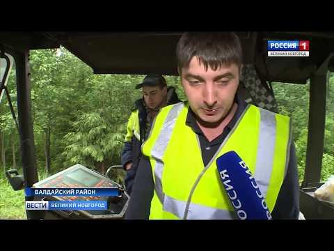 ГТРК СЛАВИЯ Ремонт дорог Валдай Окуловка 04 07 19