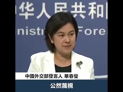 中國外交部發言人「華春莹」 精彩回应i香港的暴动事件