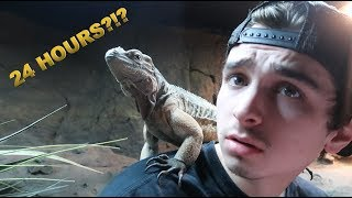Download 24 HOURS INSIDE OF REPTILE ENCLOSURE AT THE ZOO! Mp3 and Videos