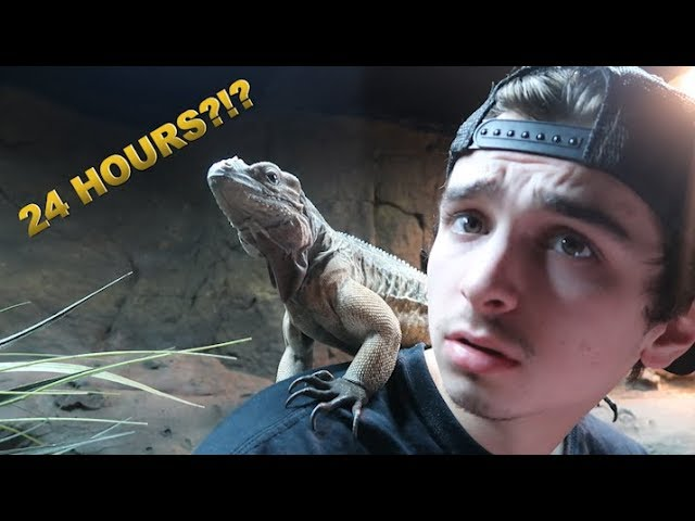 24 HOURS INSIDE OF REPTILE ENCLOSURE AT THE ZOO!