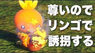 【餌付け実況】アチャモをリンゴで誘拐するアナウンサー【Newポケモンスナップ】