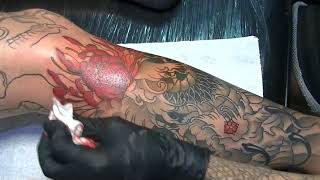 Video Japanese leg sleeve - tattoo time lapse download MP3, 3GP, MP4, WEBM, AVI, FLV Agustus 2018