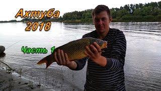 Ахтуба 2018. Рыбалка в Астрахани.  Часть 1 (Бель, Щука, Сазан)