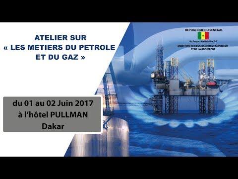 Etat des lieux de la formation aux métiers du pétrole et du gaz dans l'enseignement supérieur