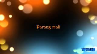 Paano Ba Ang Magmahal - Sarah Geronimo & Piolo Pascual (TBP OST) [Lyrics on Video by WenzD] [HD]