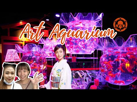 Art Aquarium Museum 2020 | Inside Tokyo's Incredible Living Exhibition! | 金魚