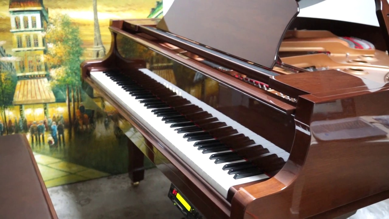 Yamaha Disklavier Pianos For Sale Like New Gently Used