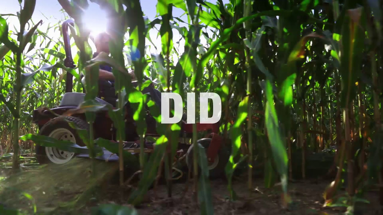 KOHLER Engine vs. Corn Field - YouTube