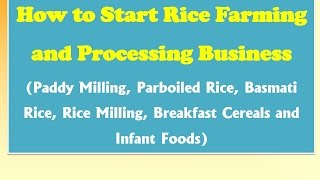 How to Start Rice Farming and Processing Business (Paddy Milling, Parboiled Rice, Basmati Rice)