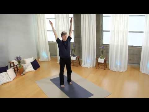 Viniyoga Therapy for Anxiety DVD Practice Sample 2