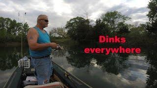 Dinks everywhere