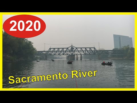 Sacramento River Salmon Fishing Report 2020: Salmon Trickling In…