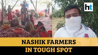 'Think we'll die of hunger': Nashik farmers unable to sell onions at fair prices