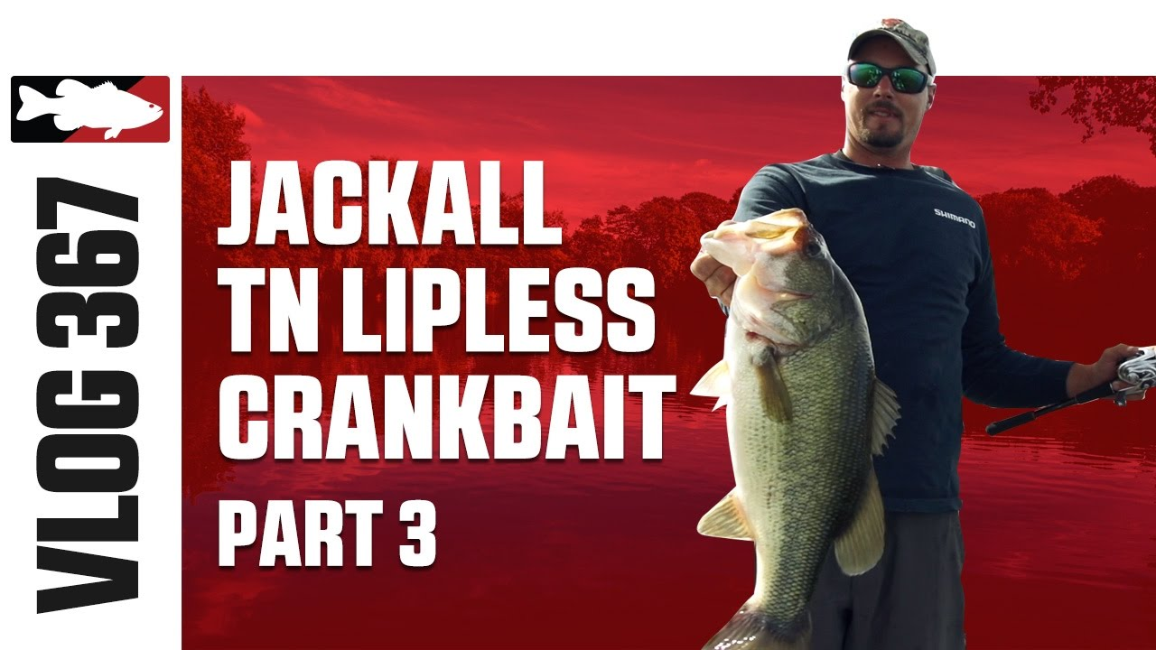 Jared Lintner & Alex Davis Fising the Jackall TN Lipless Crank on Clear Lake Part 3 - TW VLOG #367