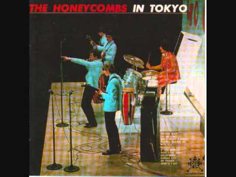 THE HONEYCOMBS / HAVE I THE RIGHT - LIVE IN TOKYO