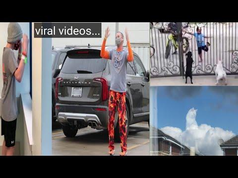 Dad dances outside hospital to cheer son Punjabi Kid bhangra dance with dogs  APFansTV