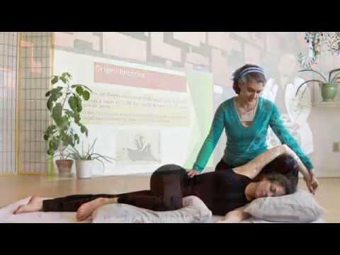 Shiatsu Chair Massage (Namikoshi)