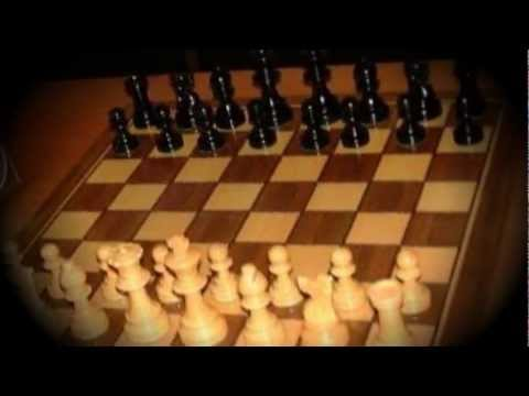 A Brief History Of Chess
