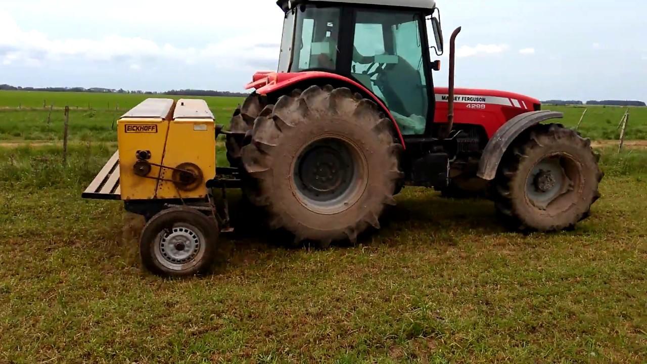 MF 4299 e Semeadeira Eickhoff EGS 819 no plantio do sorgo