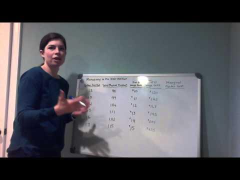 Monopsony in Labor Market Analysis