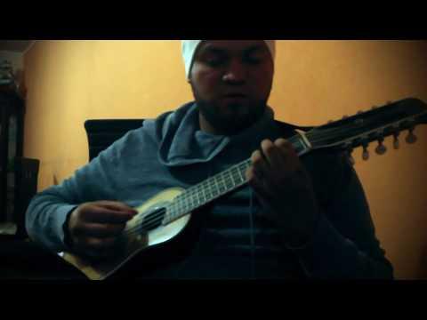 Despacito- Luis Fonsi ft. Daddy Yankee (Charango)