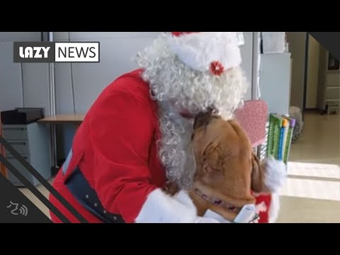 Pet Central - Lucy the dog who has been at the shelter for 900 days asks Santa for help