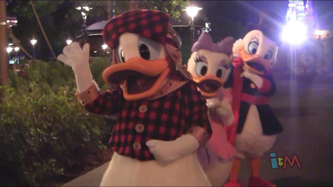 Scrooge Mcduck Donald And Daisy Duck Meet-and-greet
