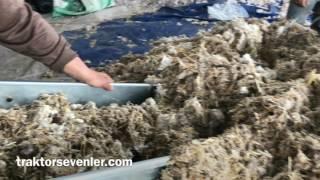 Mantar kompost üretimi nasıl yapılır