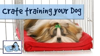 Crate/cage Training - Tips On How To Train Your Dog To Use A Crate