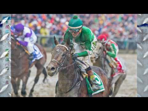 Travers Stakes 2016 video analysis featuring Exaggerator, Am