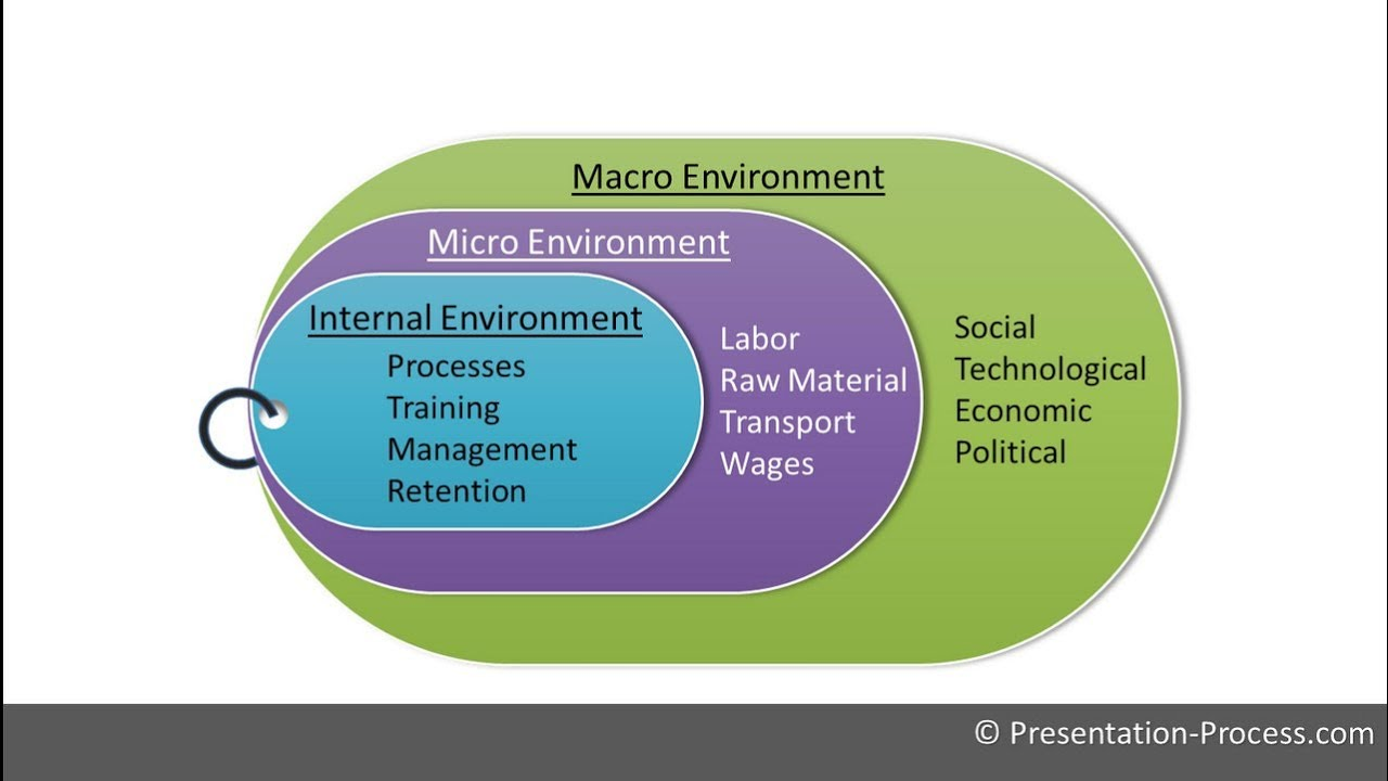 macro and micro environment of apple