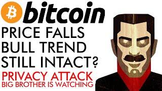 Bitcoin Price Falls- Bull Trend Still Intact? MASSIVE Privacy Attack