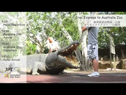 Croc Express to Australia Zoo, Sunshine Coast, AUD | Experience OZ & NZ!