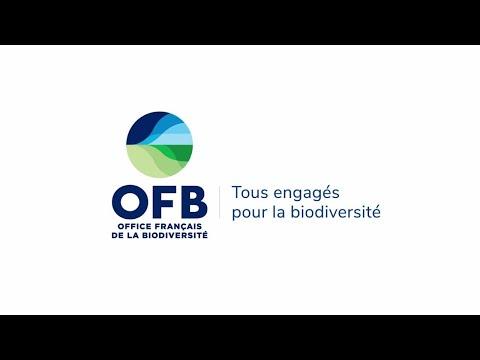 En route vers l'Office français de la biodiversité