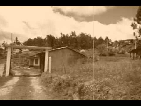 Musica ecuatoriana: La foto del recuerdo.