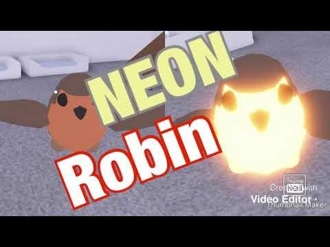 Roblox Adopt Me Making A Neon Robin Youtube