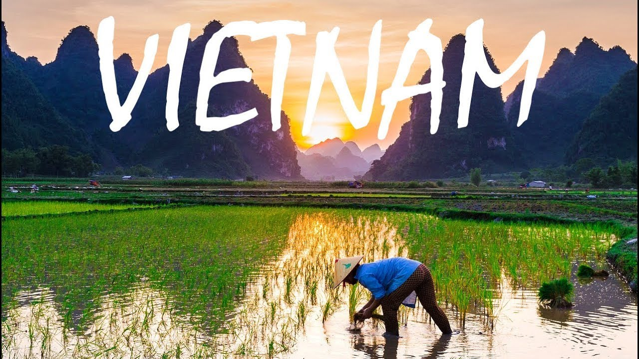This Is Why You Should Travel to VIETNAM