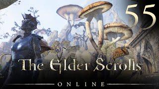 DESHAAN! - Elder Scrolls Online Let