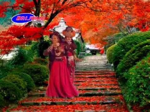 Radha Dhundh Rahi Kisi Ne Mera Shyam Dekha | Shyam Bhajan