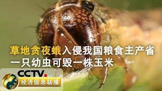 《经济信息联播》 20190707  CCTV财经
